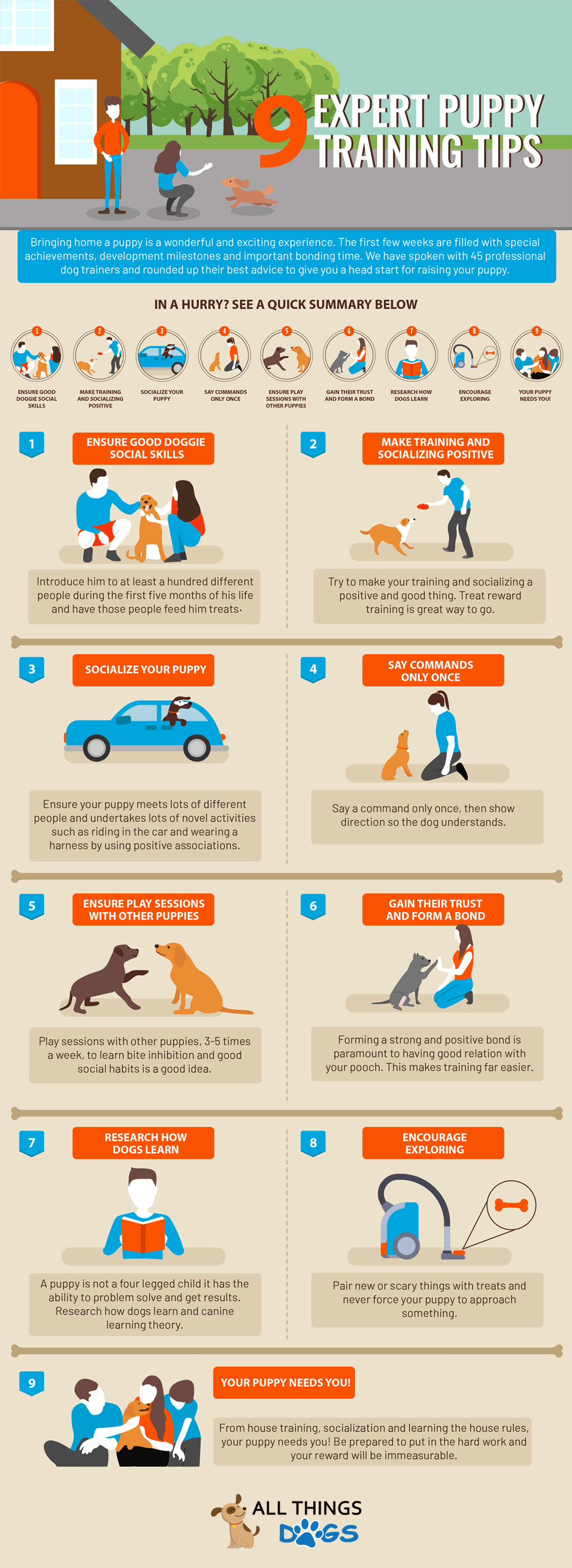 The Best 9 Puppy Training Tips