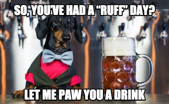 "So, you've had a ""ruff"" day"