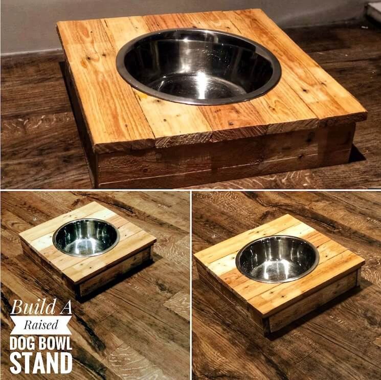 Build a Raised Dog Bowl Stand Feature