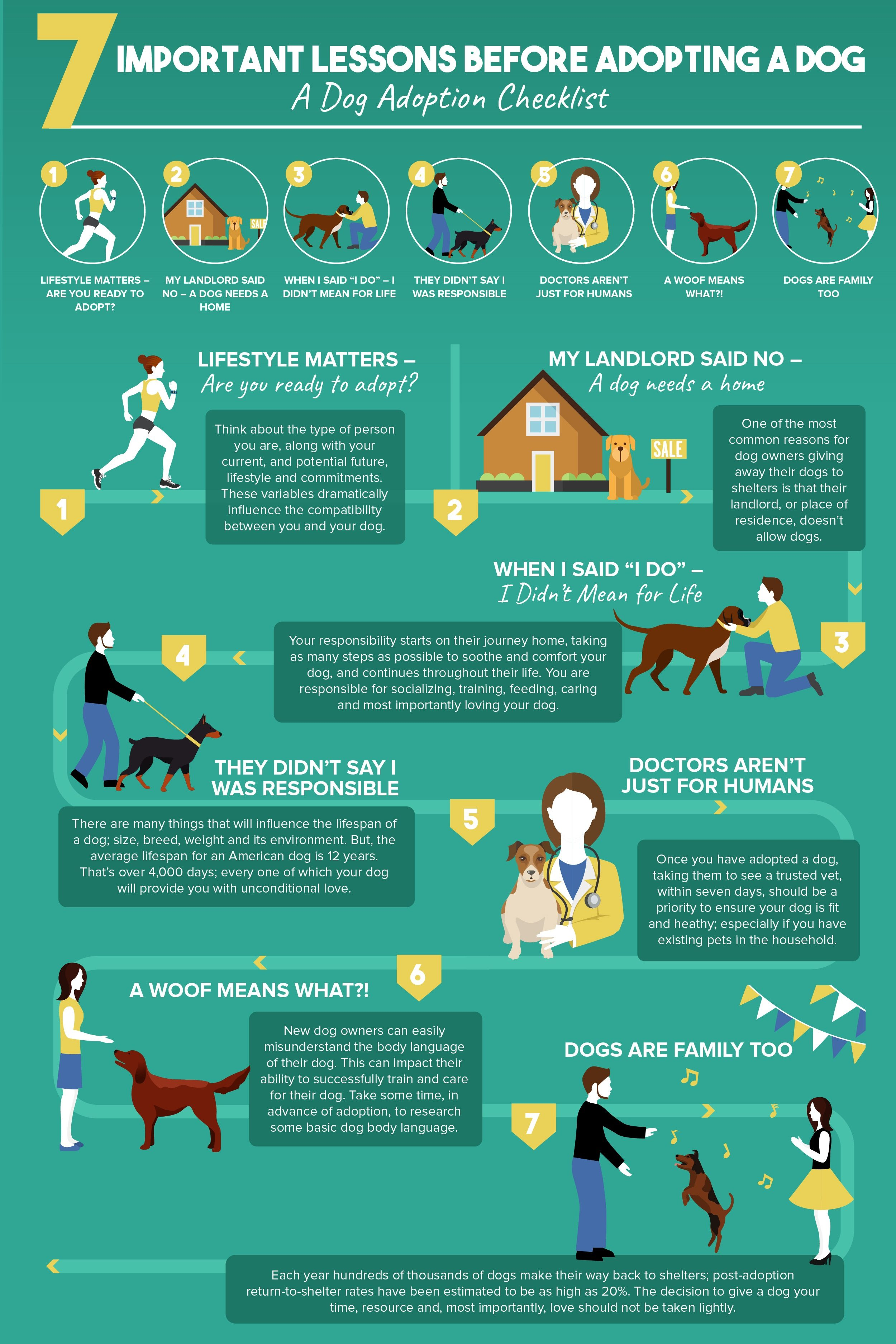14 Dog Shelters Speak Out: What You Should Know BEFORE Adopting a