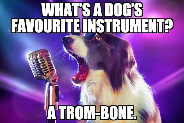 Dog Singing Meme