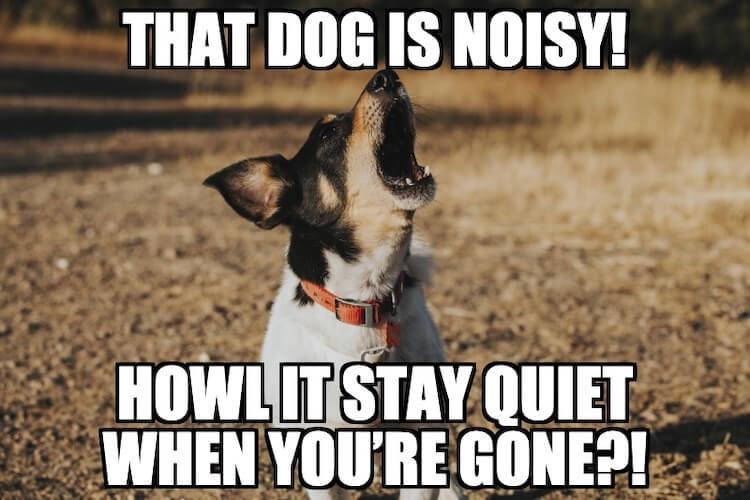 Howling Dog Pun